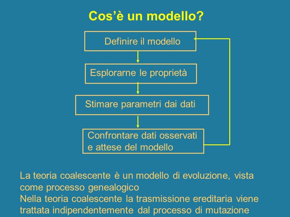Cos'è un modello Definire il modello Esplorarne le proprietà