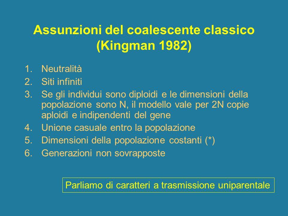 Assunzioni del coalescente classico (Kingman 1982)