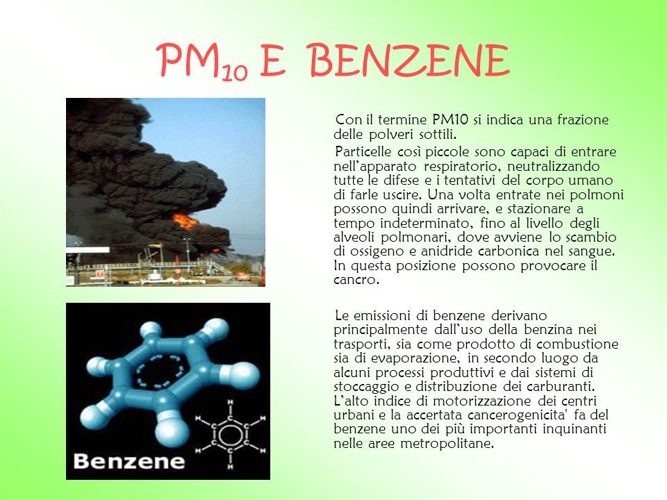 PM10 E BENZENE Con il termine PM10 si indica una frazione delle polveri sottili.