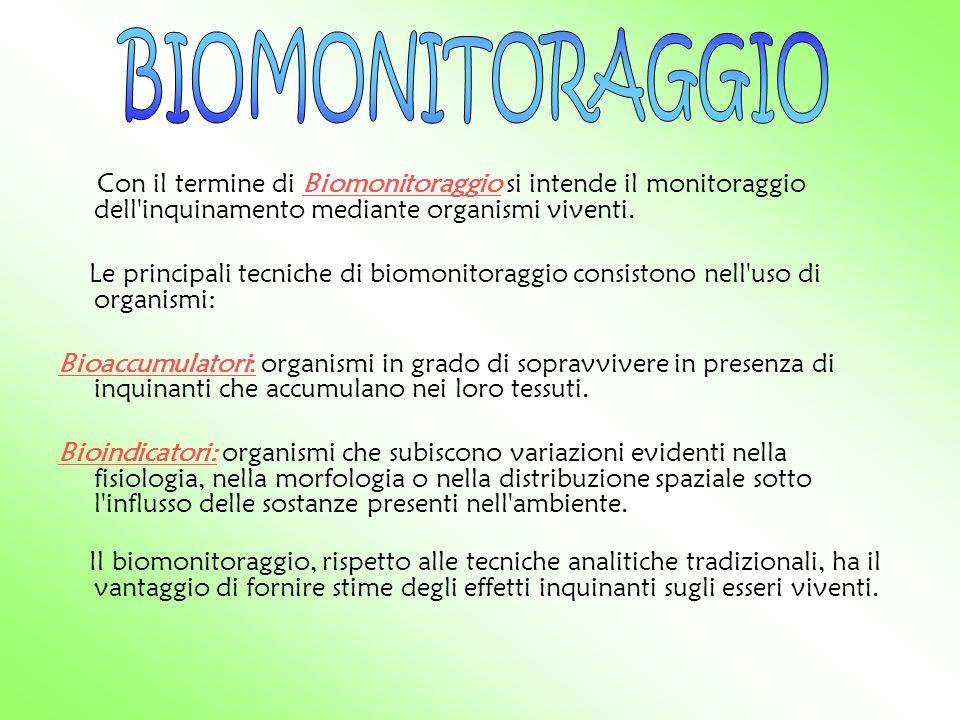 BIOMONITORAGGIO Con il termine di Biomonitoraggio si intende il monitoraggio dell inquinamento mediante organismi viventi.