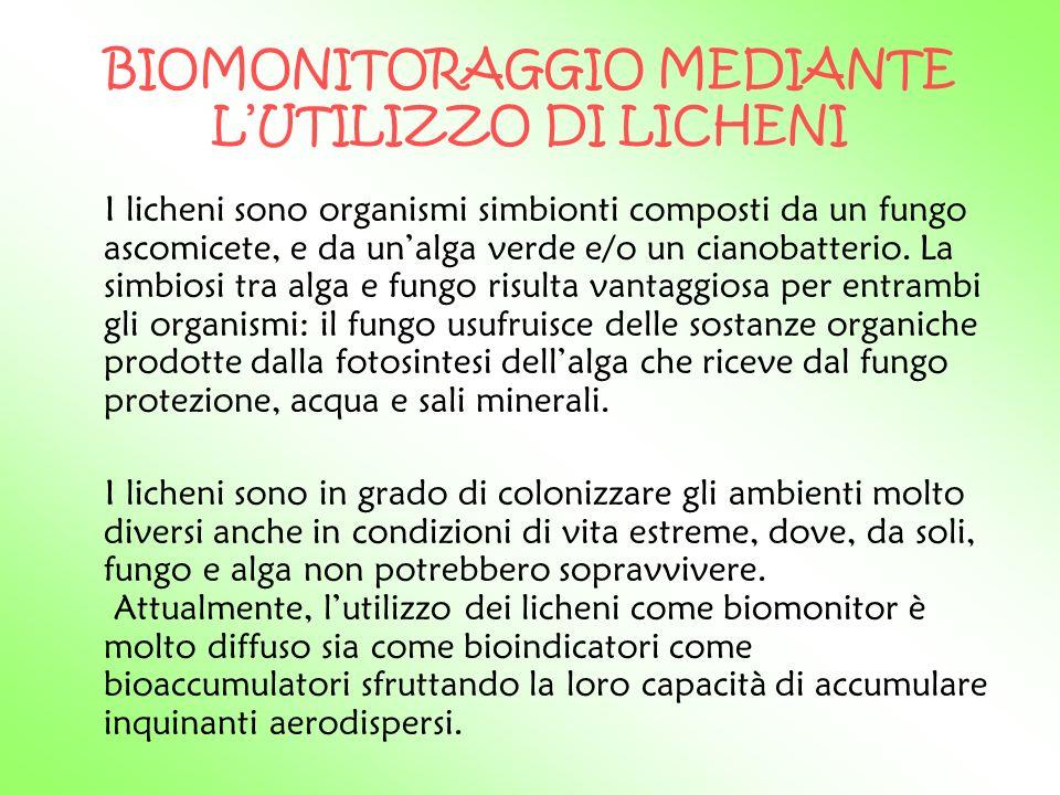 BIOMONITORAGGIO MEDIANTE L'UTILIZZO DI LICHENI