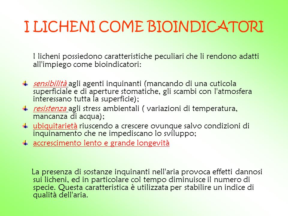 I LICHENI COME BIOINDICATORI