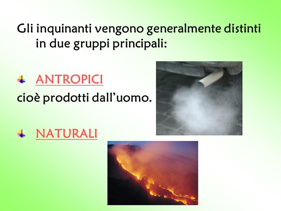 Gli inquinanti vengono generalmente distinti in due gruppi principali: