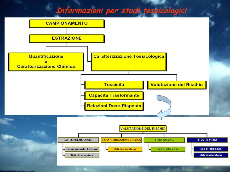 Informazioni per studi tossicologici