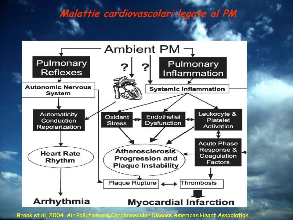 Malattie cardiovascolari legate al PM