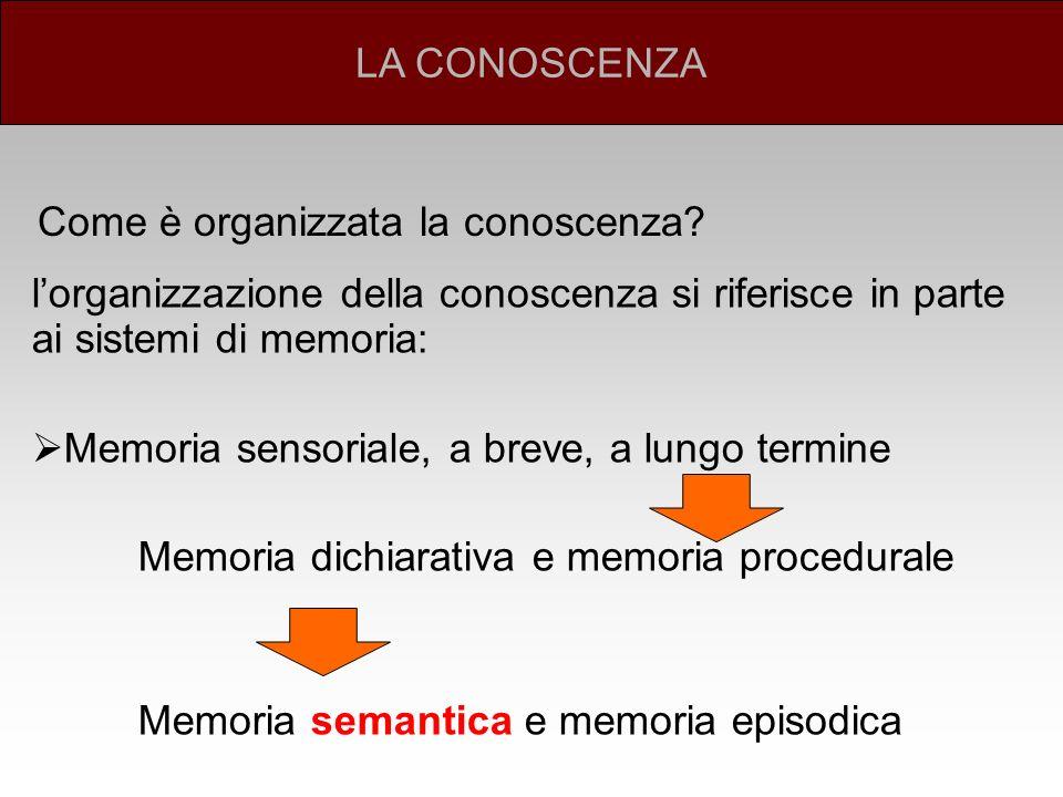 LA CONOSCENZA Come è organizzata la conoscenza l'organizzazione della conoscenza si riferisce in parte ai sistemi di memoria: