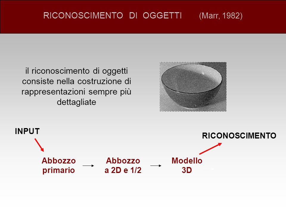 RICONOSCIMENTO DI OGGETTI (Marr, 1982)