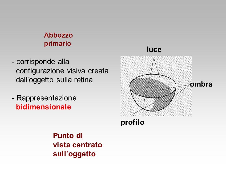 configurazione visiva creata dall'oggetto sulla retina