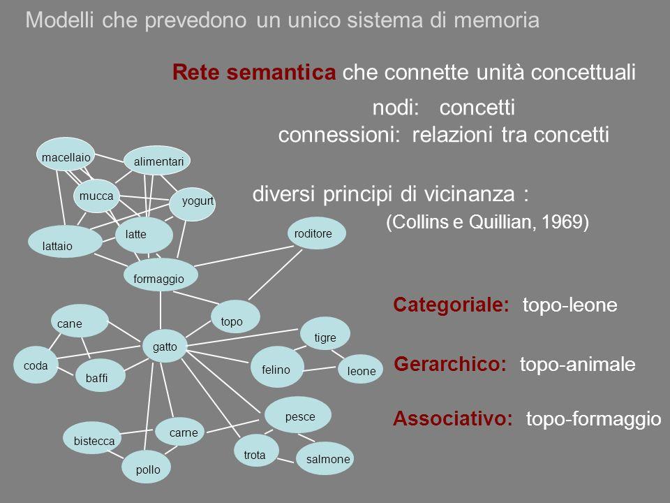 Modelli che prevedono un unico sistema di memoria