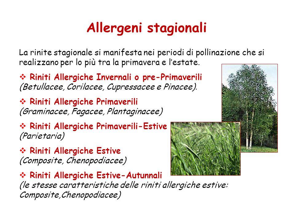 Allergeni stagionali La rinite stagionale si manifesta nei periodi di pollinazione che si realizzano per lo più tra la primavera e l'estate.