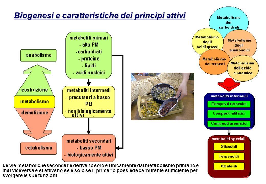 Biogenesi e caratteristiche dei principi attivi