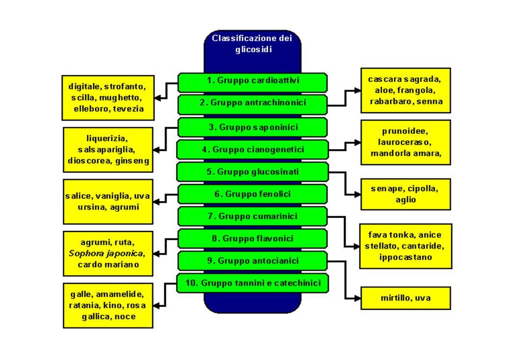 Saponine: proprietà tensioattive dei saponi
