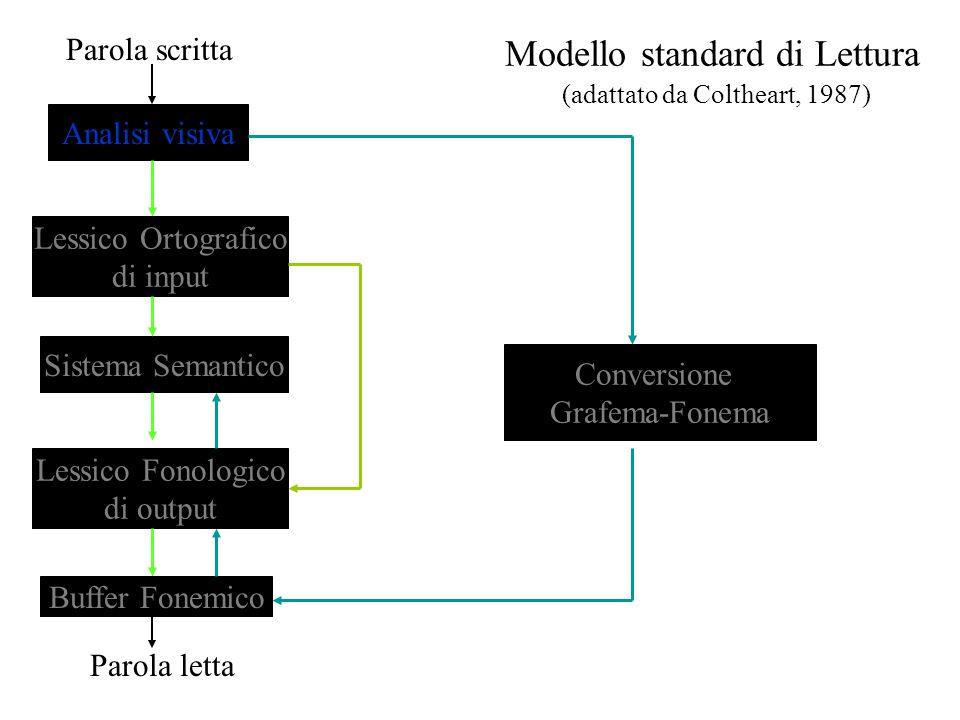 Modello standard di Lettura