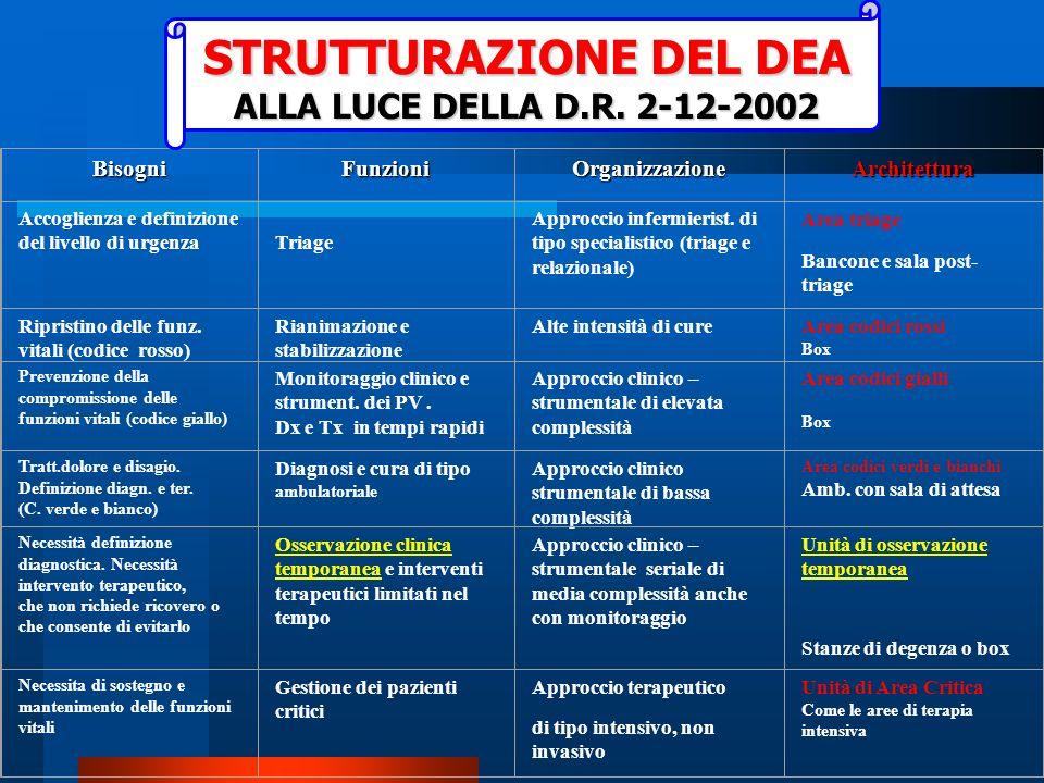 STRUTTURAZIONE DEL DEA ALLA LUCE DELLA D.R. 2-12-2002