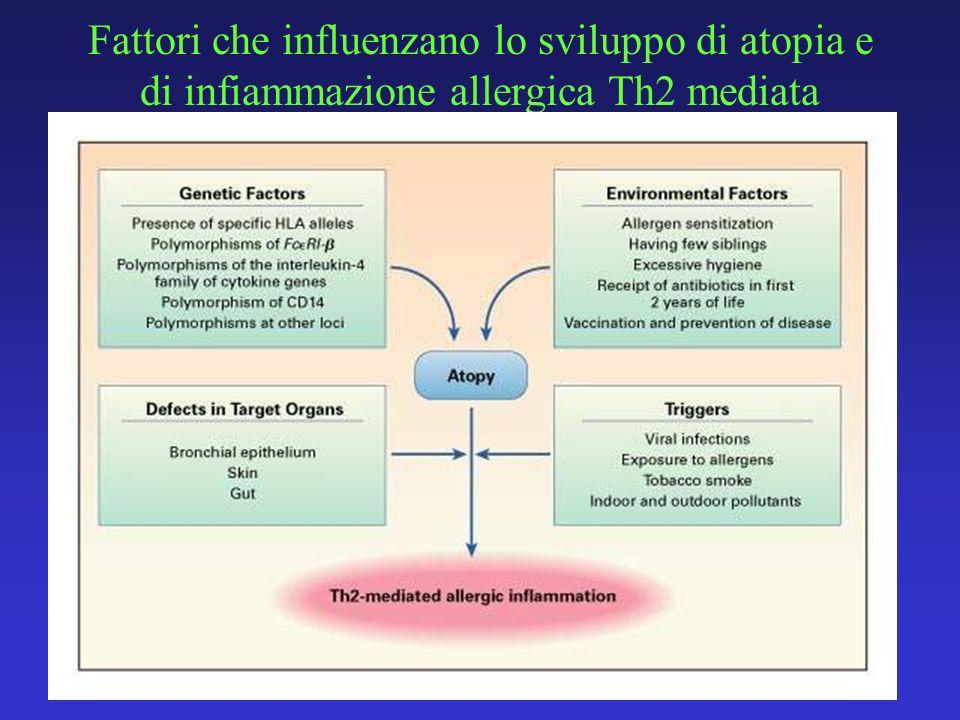 Fattori che influenzano lo sviluppo di atopia e di infiammazione allergica Th2 mediata