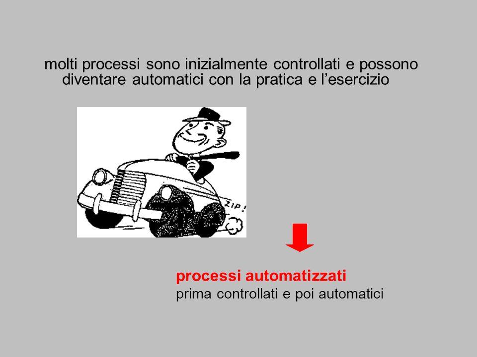 processi automatizzati