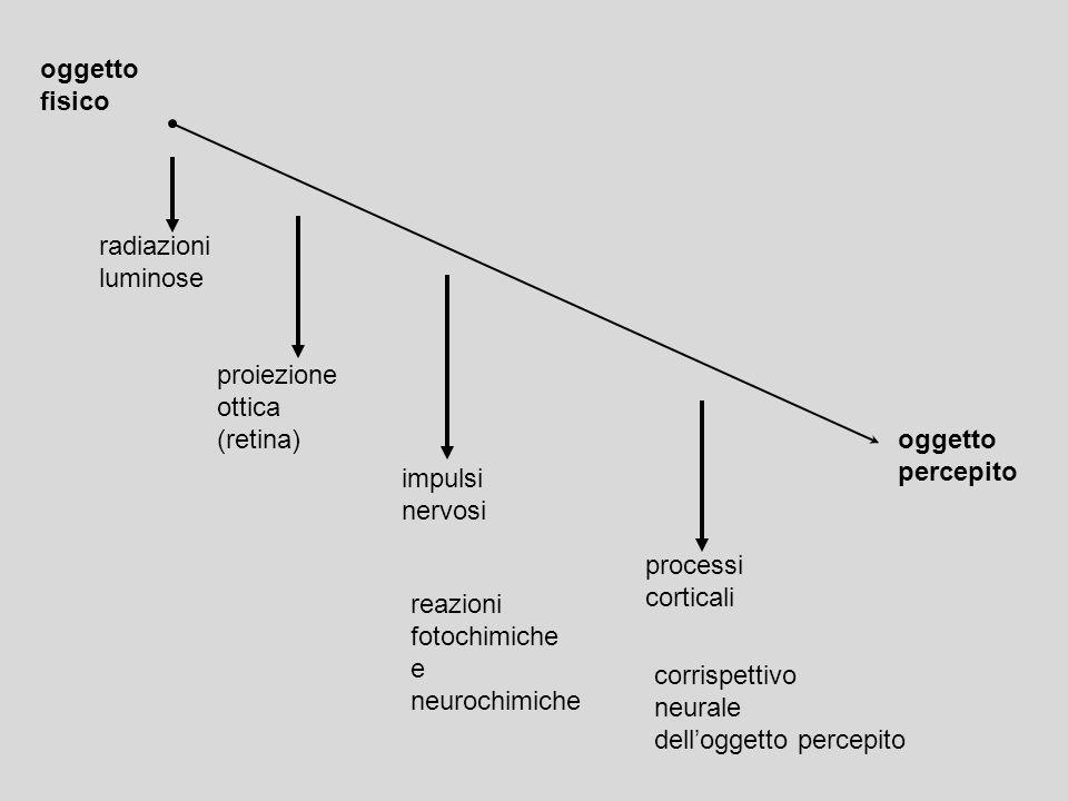 oggetto fisico. radiazioni. luminose. proiezione. ottica. (retina) oggetto. percepito. impulsi.
