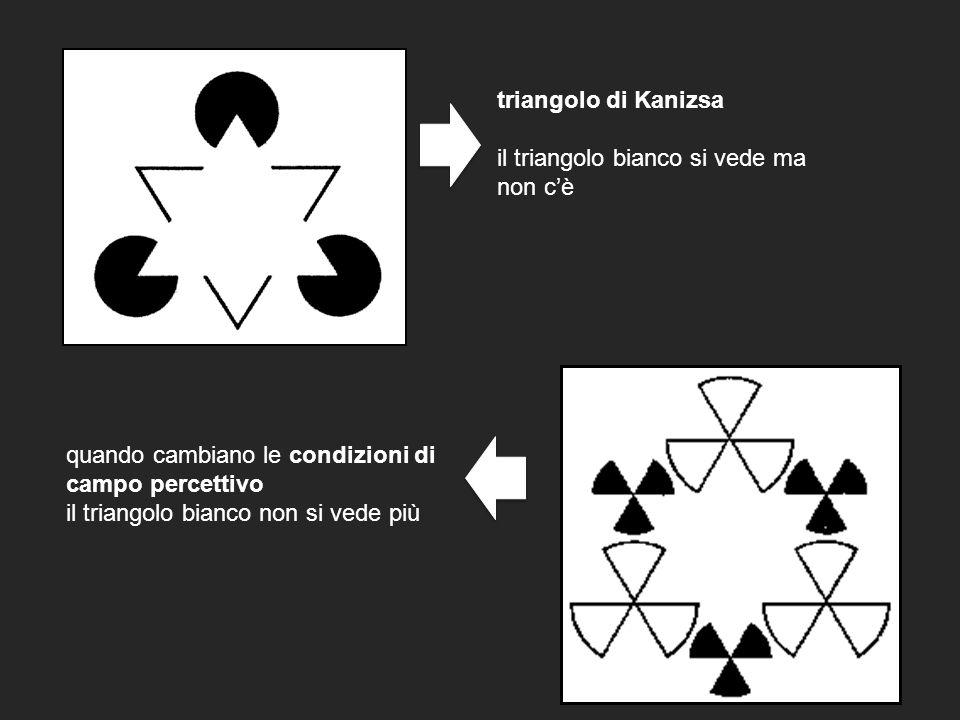 triangolo di Kanizsa il triangolo bianco si vede ma. non c'è. quando cambiano le condizioni di campo percettivo.