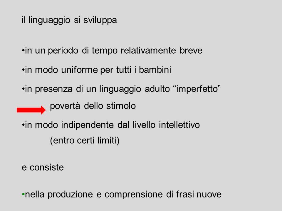 il linguaggio si sviluppa