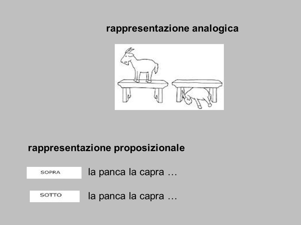rappresentazione analogica