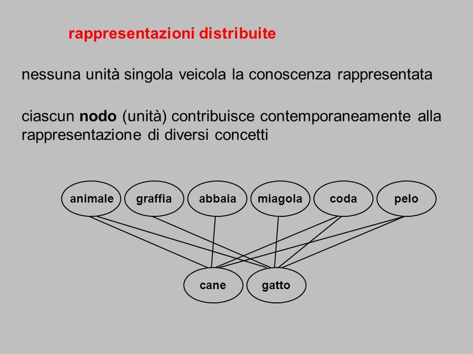 rappresentazioni distribuite
