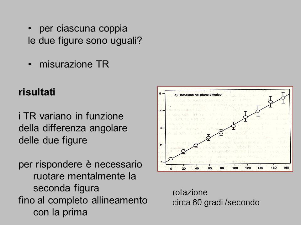 le due figure sono uguali misurazione TR