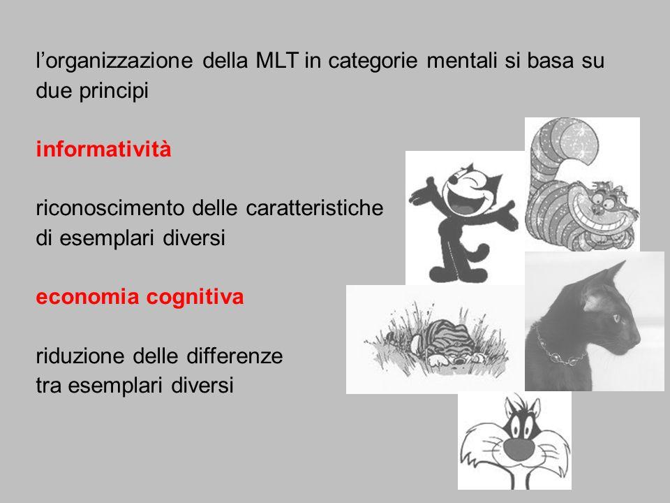 l'organizzazione della MLT in categorie mentali si basa su