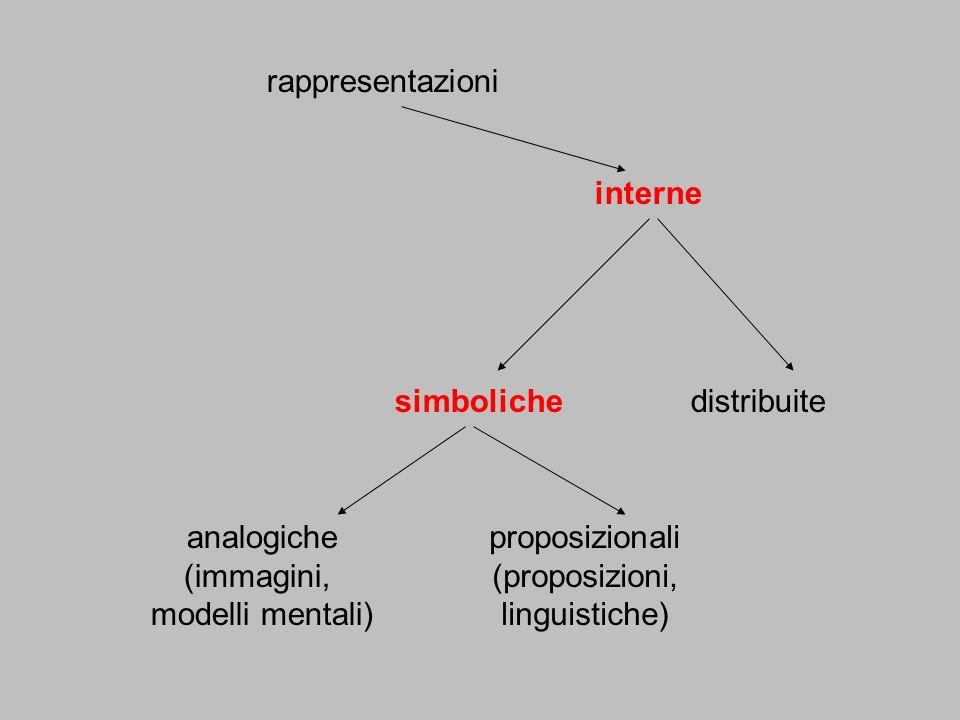 rappresentazioni interne. simboliche. distribuite. analogiche. (immagini, modelli mentali) proposizionali.