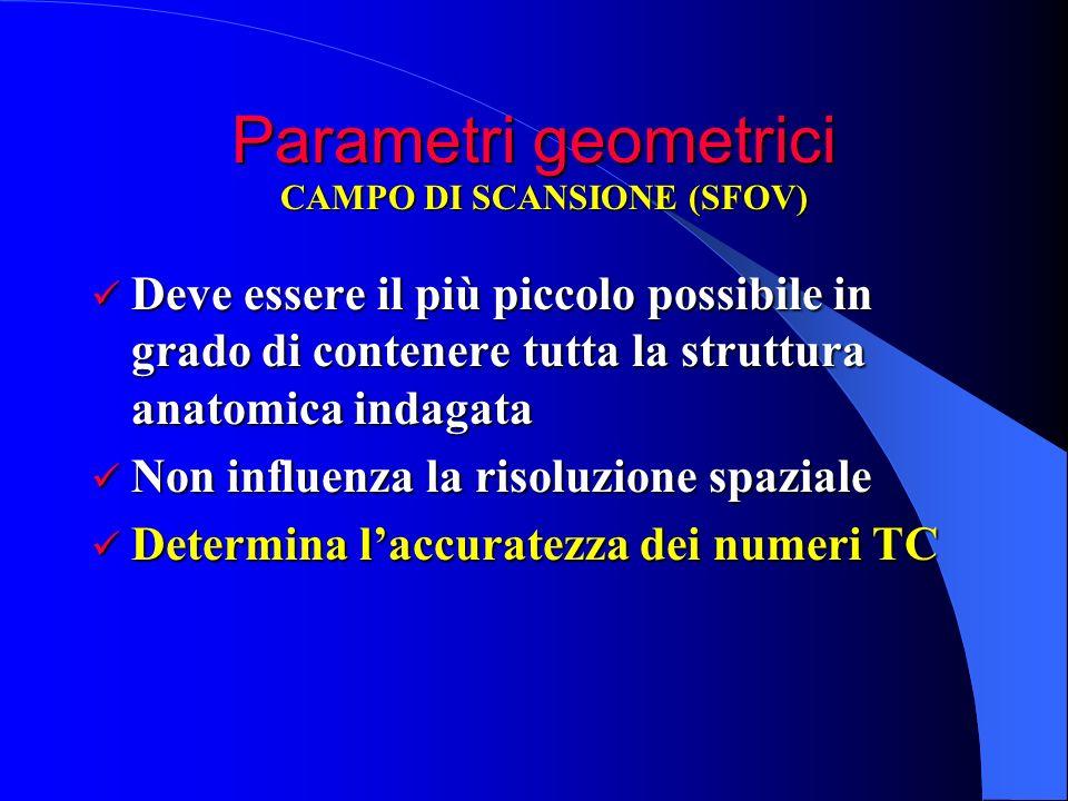Parametri geometrici CAMPO DI SCANSIONE (SFOV) Deve essere il più piccolo possibile in grado di contenere tutta la struttura anatomica indagata.