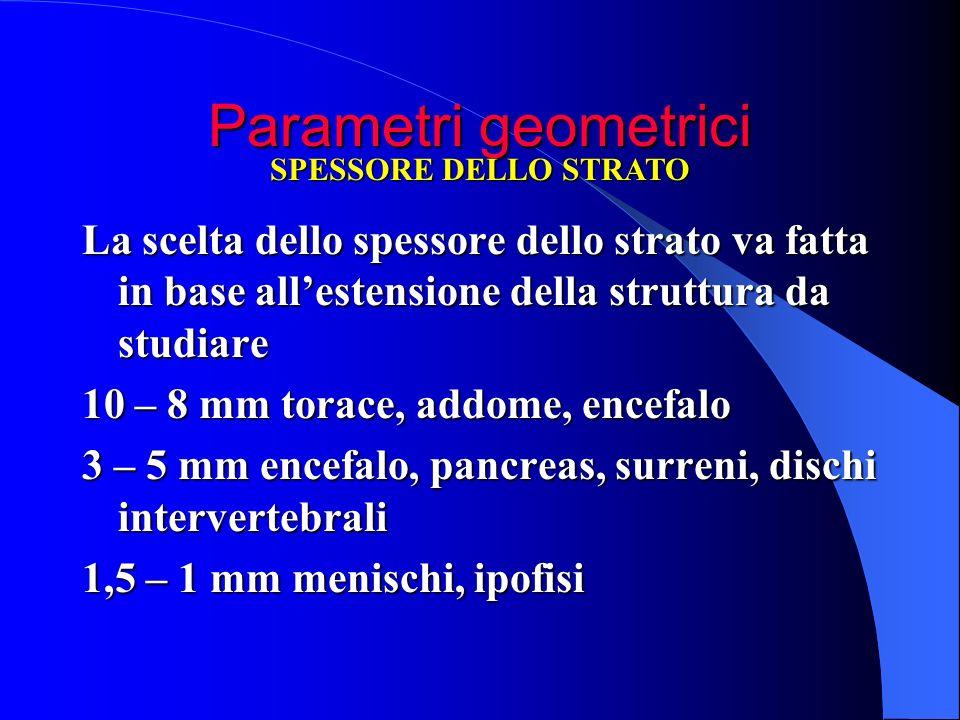 Parametri geometrici SPESSORE DELLO STRATO. La scelta dello spessore dello strato va fatta in base all'estensione della struttura da studiare.