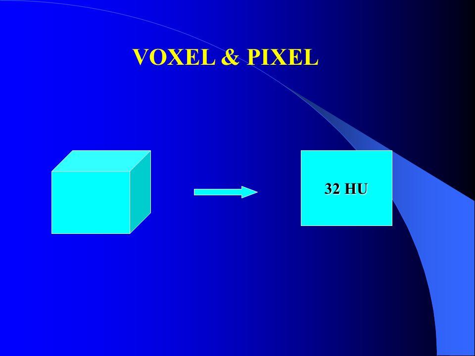 VOXEL & PIXEL 32 HU