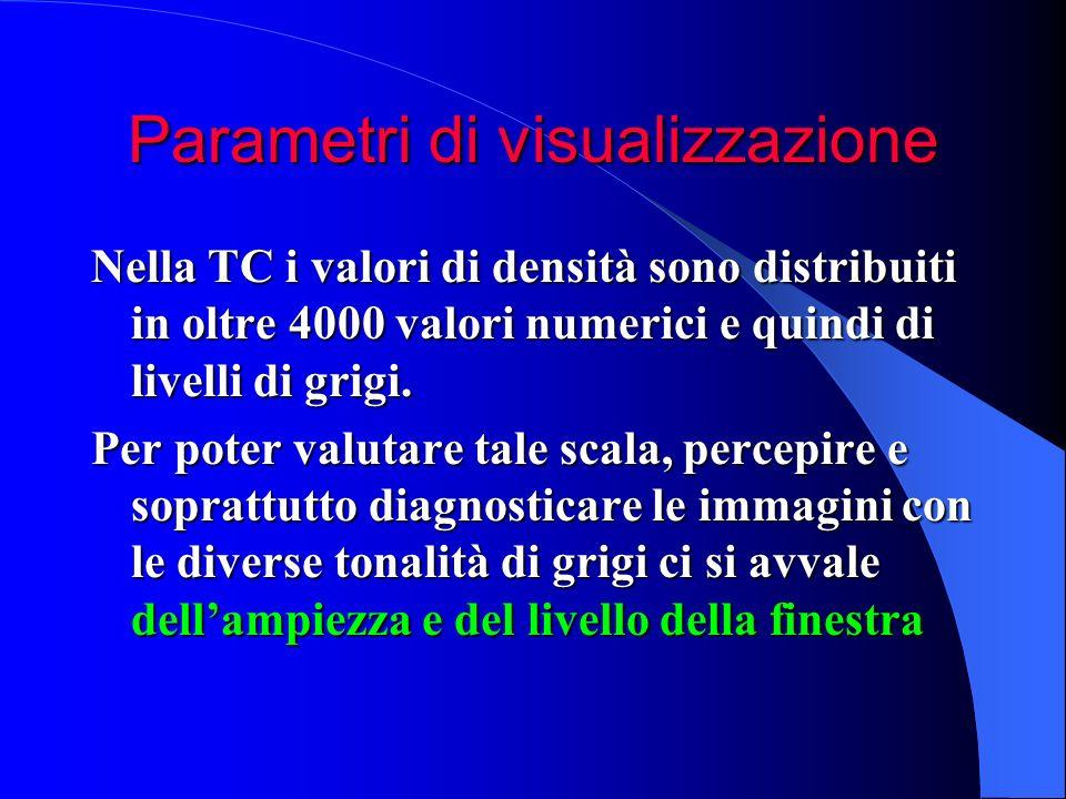Parametri di visualizzazione