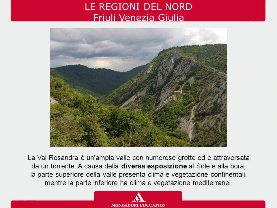 LE REGIONI DEL NORD Friuli Venezia Giulia