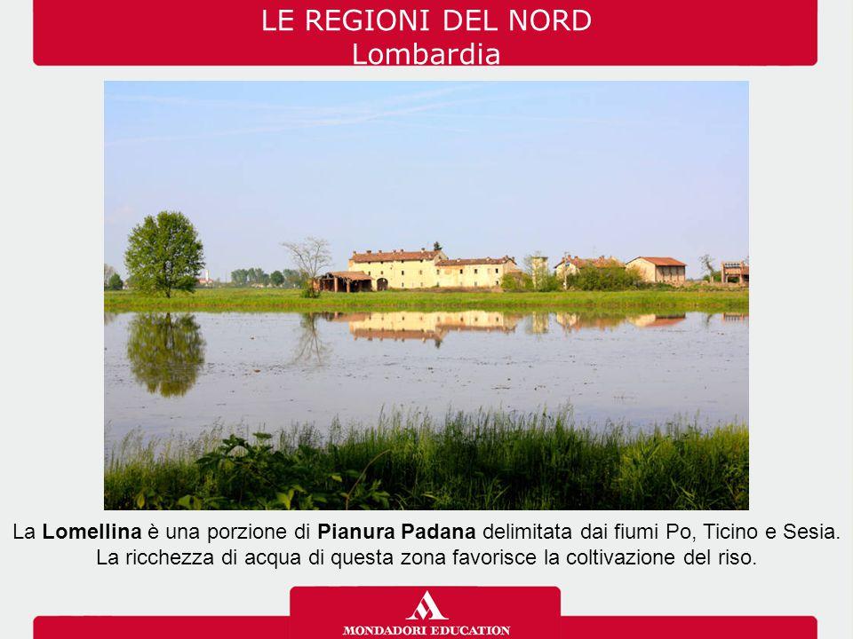 LE REGIONI DEL NORD Lombardia