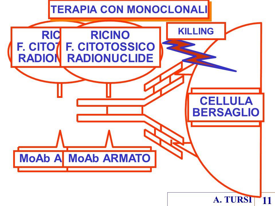 TERAPIA CON MONOCLONALI