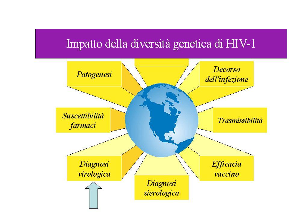 L'impatto della diversità genetica di HIV-1 è potenzialmente di grande rilievo e non è stato ancora indagato in modo completo