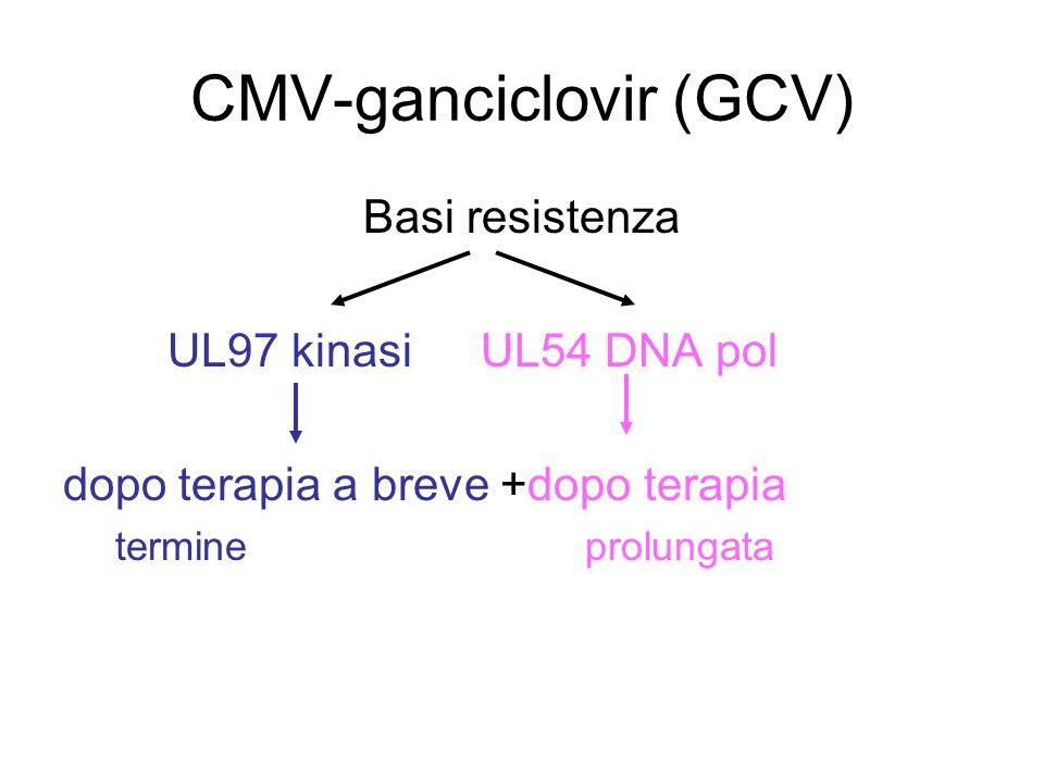 CMV-ganciclovir (GCV)