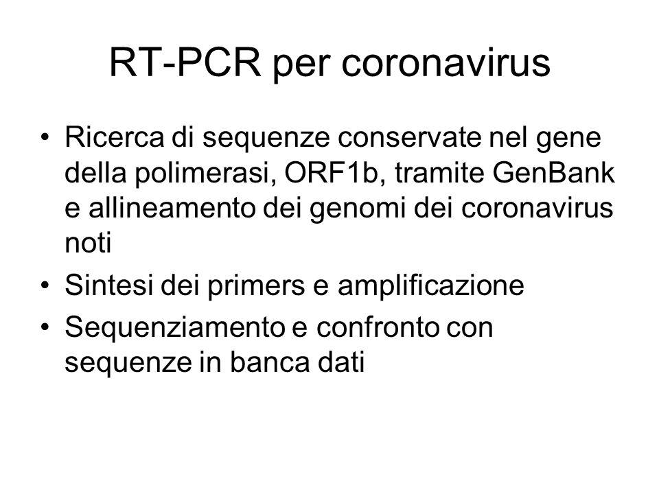 RT-PCR per coronavirus
