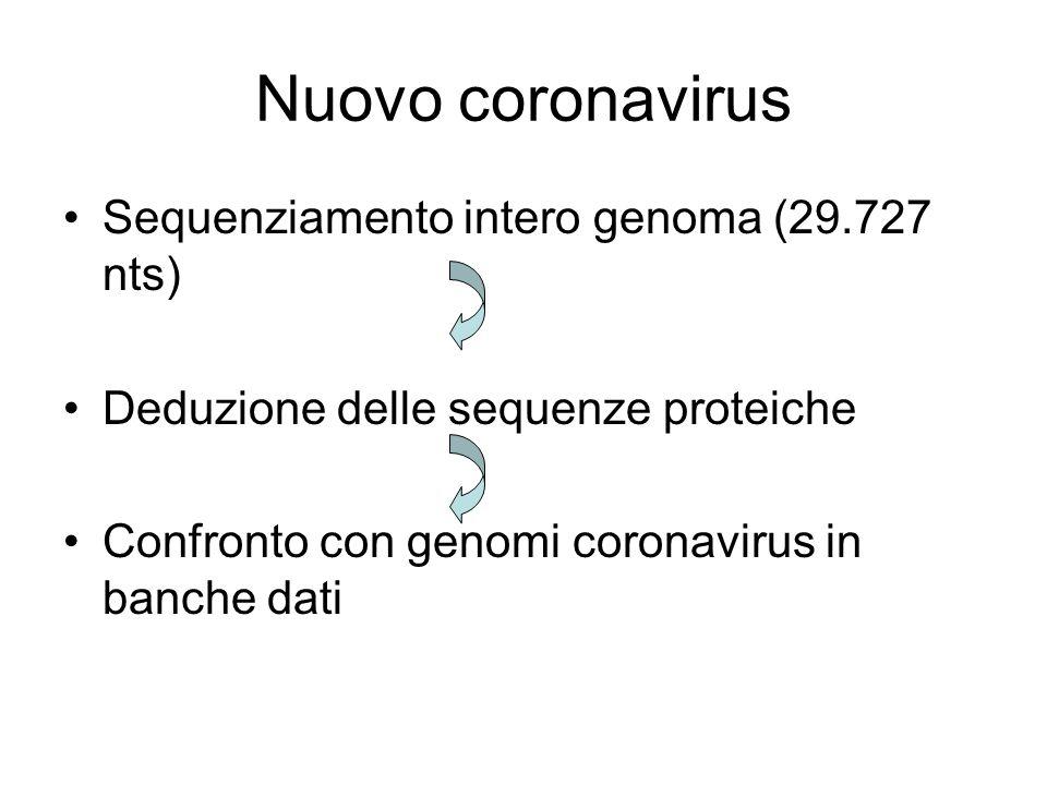 Nuovo coronavirus Sequenziamento intero genoma (29.727 nts)
