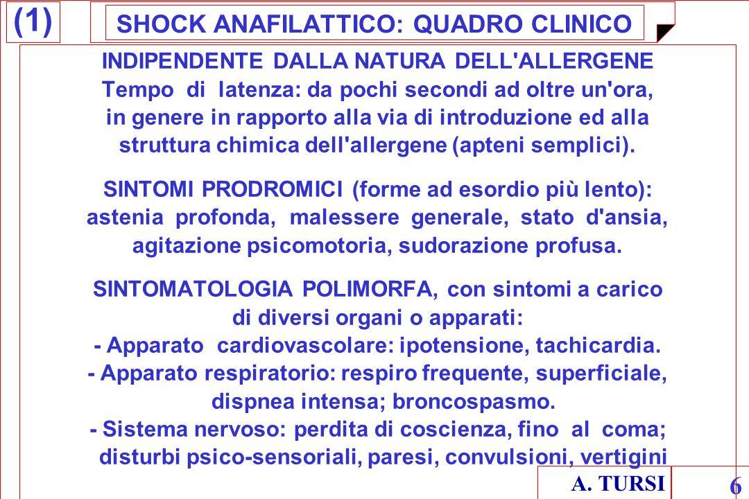 SHOCK ANAFILATTICO: QUADRO CLINICO