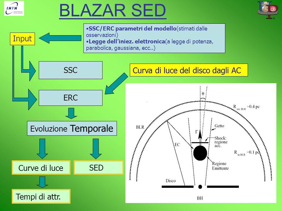 BLAZAR SED Input SSC Curva di luce del disco dagli AC ERC