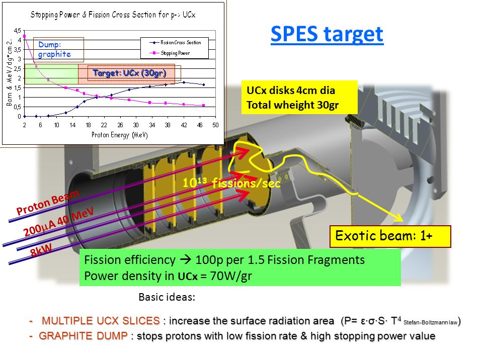 SPES target Exotic beam: 1+