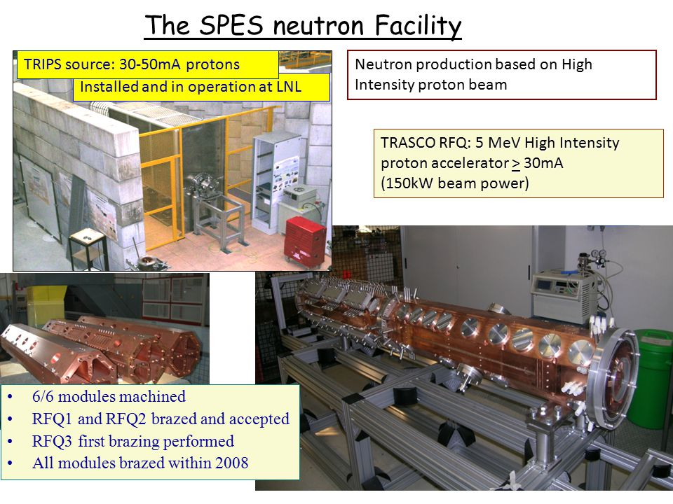 The SPES neutron Facility
