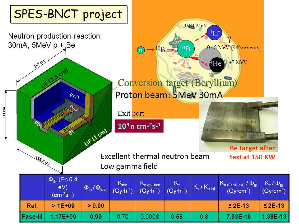 SPES-BNCT project γ Conversion target (Beryllium)