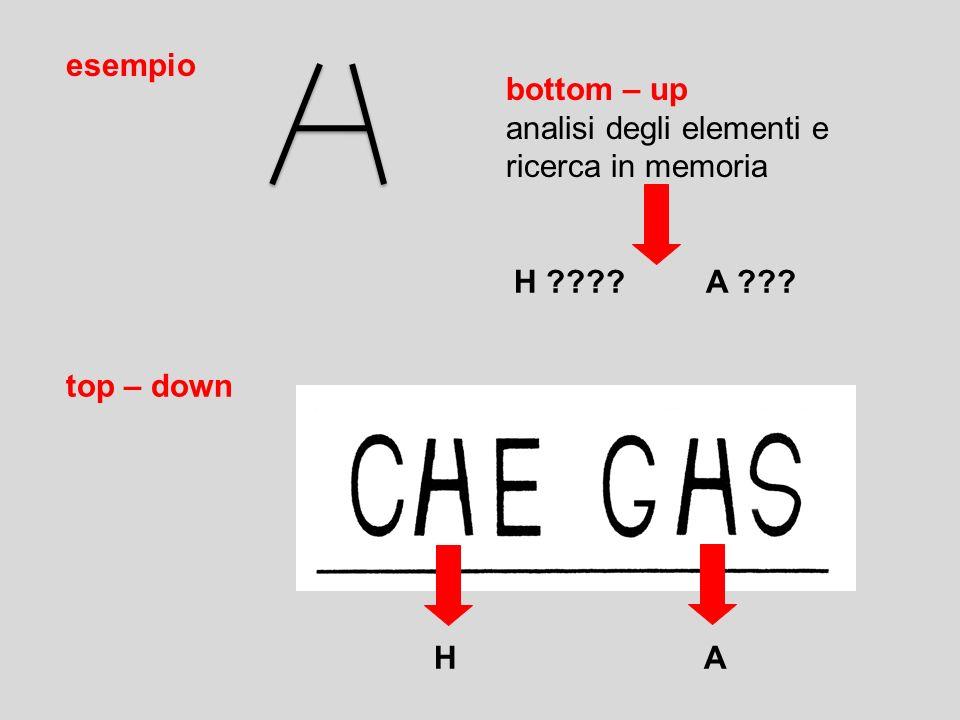 esempio bottom – up. analisi degli elementi e. ricerca in memoria.