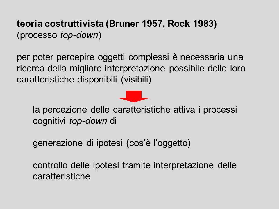 teoria costruttivista (Bruner 1957, Rock 1983) (processo top-down)
