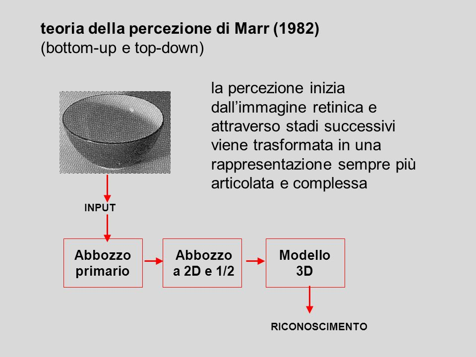 teoria della percezione di Marr (1982) (bottom-up e top-down)
