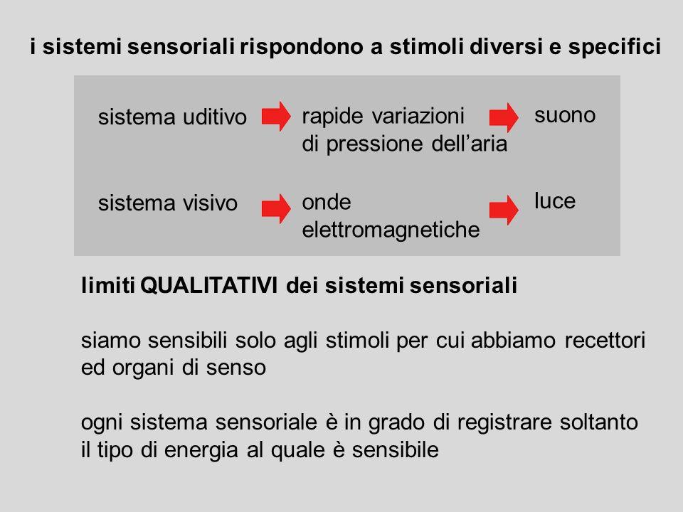i sistemi sensoriali rispondono a stimoli diversi e specifici