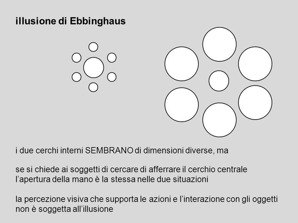 illusione di Ebbinghaus
