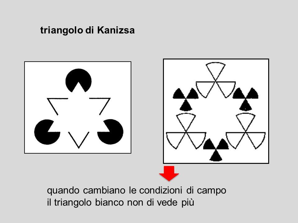 triangolo di Kanizsa quando cambiano le condizioni di campo il triangolo bianco non di vede più